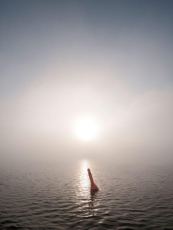 Boje im Nebel