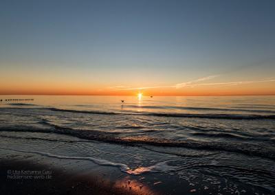 Sonne, Boot und Möwe