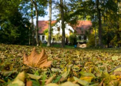 Pfarrgarten im Herbst