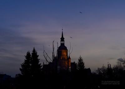 Guten Morgen Stralsund